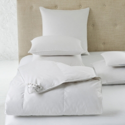 Sferra Dover Down Bedding