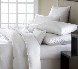 Downright Comforters & Pillows