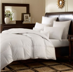 Downright Logana Comforters