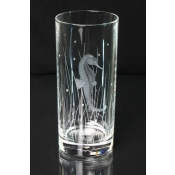 Pacifica Highball Glass Seahorse