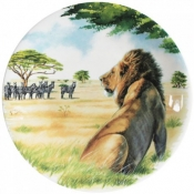 Safari Dessert Plate - Lion
