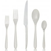 L'Ame de Christofle Stainless 5 Piece Setting