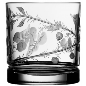 Varga Crystal Rain Forest Double Old Fashion