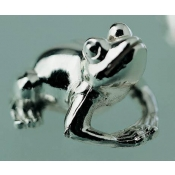 Grenouille Six Frog Name Card Holders in Case
