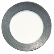 Raynaud Horizon Granite Platinum Buffet Plate