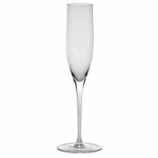 Champagne Flute 6.7 Oz. Clear