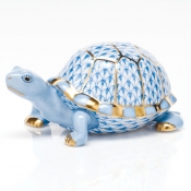 Box Turtle Box Turtle - Blue