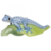 Gecko on Leaf Blue